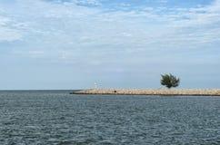 Одиночное дерево на пристани на море под облачным небом - всем в голубом Стоковое Изображение RF