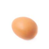 Одиночное коричневое изолированное яичко цыпленка Стоковая Фотография