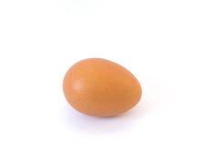 Одиночное коричневое яичко цыпленка изолированное на белизне Стоковые Изображения