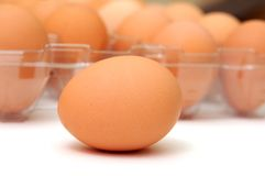 Одиночное коричневое яичко Стоковое Изображение