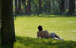 одиночное лето Стоковое фото RF