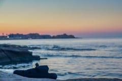 Одиночное темповое сальто сальто выведено на край вод в Silema, Мальту стоковые фотографии rf