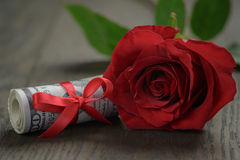 Одиночные красные розы и пук долларов Стоковое Изображение