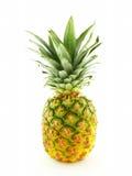 Одиночный ананас Стоковые Изображения
