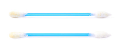 Одиночный бутон пробирки хлопка Стоковая Фотография