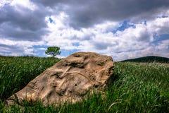 одиночный камень Стоковое Изображение