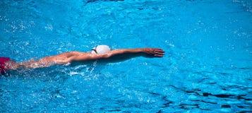 Одиночный пловец Стоковое Фото