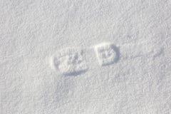 Одиночный шаг ноги на снег Стоковое фото RF