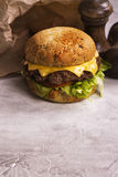 Одиночный cheeseburger говядины Стоковое Фото