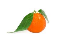 Один апельсин мандарина с листьями на светлой предпосылке Стоковые Фотографии RF