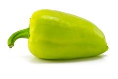 Один зеленый болгарский перец Стоковое фото RF