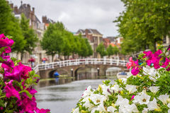 Один из много каналов в Лейдене, Голландия Стоковые Изображения