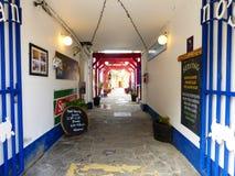 Один из переулков на графстве Carlow Стоковые Фото