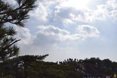 Один из Huangshan Стоковое Фото