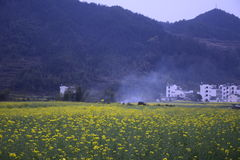Один из Huangshan Стоковые Изображения
