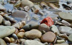 Один камень Red River среди большого количества серых камней реки Стоковые Изображения