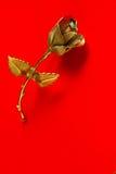 Один металл поднял на красную предпосылку для приветствий праздника стоковые фото