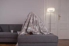 Один молодой человек, под прятать простынь Стоковая Фотография RF