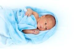 Один младенец недели старый в одеяле на белой предпосылке Стоковая Фотография RF