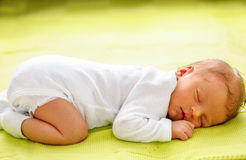 Один младенец недели старый newborn Стоковые Изображения RF