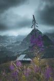 Один дом и внушительный взгляд для гор Стоковое фото RF