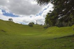 Один парк Окленд Новая Зеландия холма дерева Стоковое Изображение RF