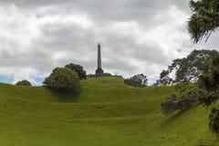 Один парк Окленд Новая Зеландия холма дерева Стоковое Фото