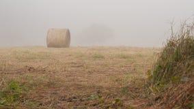Один стог сена Стоковая Фотография