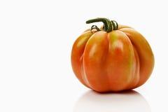 Один томат сердца вола на белой предпосылке Стоковые Фотографии RF