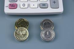 Один фунт и злотый заполированности Стоковые Фотографии RF