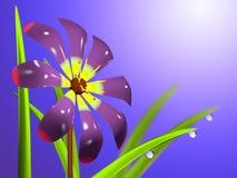 Один цветок с листьями и падениями Стоковые Изображения