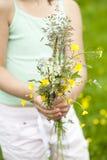 Одичалые цветки Стоковые Фото