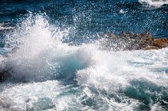 Одичалая береговая линия Аруба в Вест-Инди стоковое изображение rf