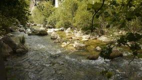 Одичалая вода на Cote d'Azur, южной Франции сток-видео