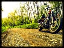Одичалая езда Стоковые Фото