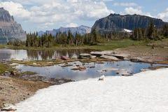 Одичалая козочка в горах Стоковое фото RF