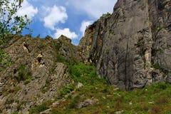 Одичалая природа в утесах altai Стоковое Изображение