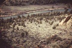 Одичалая природа Калифорнии Стоковые Фотографии RF