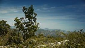 Одичалая природа на Col de Vence в южной Франции сток-видео