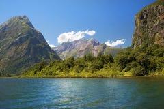 Одичалая природа Новой Зеландии Стоковые Изображения RF