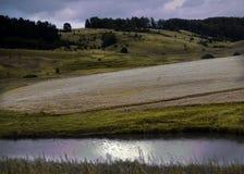 Одичалая природа России в лете Стоковая Фотография