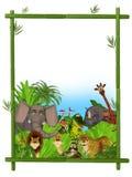 Одичалая рамка животных шаржа Стоковые Изображения RF