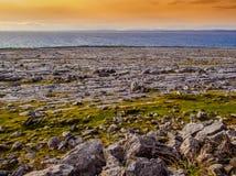 Одичалое побережье Burren на заходе солнца Стоковые Фотографии RF