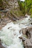 Одичалое река в горах Стоковые Фотографии RF