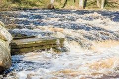 Одичалое река Стоковые Изображения RF