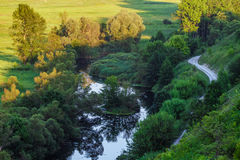 Одичалое река Стоковые Изображения