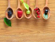 одичалое ягод свежее Стоковые Фото