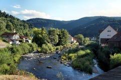 Одичало романтичная долина Murg в черном лесе Стоковое Изображение RF