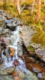 Одичалые гористые местности Стоковые Фото