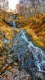 Одичалые гористые местности Стоковое Изображение